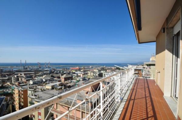 Appartamento in affitto a Genova, Sestri Ponente, Con giardino, 130 mq