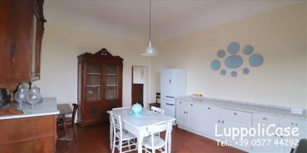 Appartamento in affitto a Siena, Arredato, con giardino, 240 mq - Foto 24