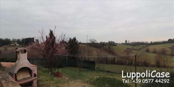 Appartamento in affitto a Siena, Arredato, con giardino, 240 mq - Foto 4