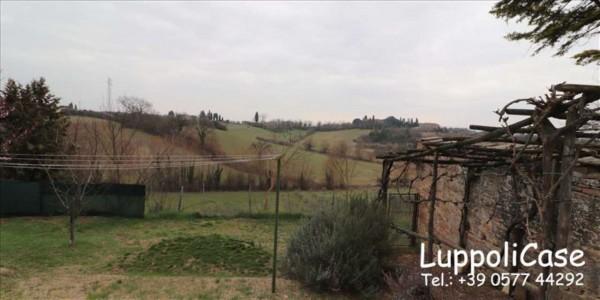 Appartamento in affitto a Siena, Arredato, con giardino, 240 mq - Foto 3
