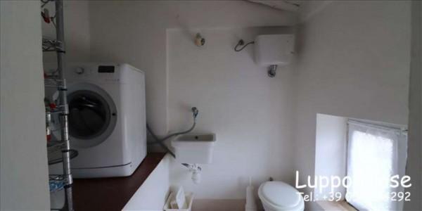 Appartamento in affitto a Siena, Arredato, con giardino, 240 mq - Foto 9
