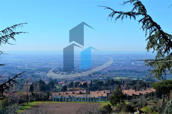 Locale Commerciale  in vendita a Castel Gandolfo, Castel Gandolfo, 140 mq