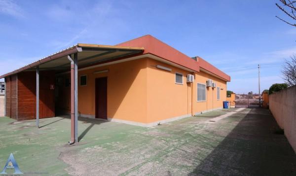 Locale Commerciale  in affitto a Taranto, Lama, Con giardino, 370 mq - Foto 18