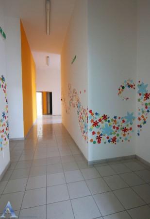 Locale Commerciale  in affitto a Taranto, Lama, Con giardino, 370 mq - Foto 14