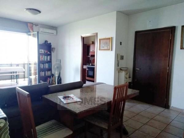 Appartamento in vendita a Roma, Cinecittà Est, Con giardino, 90 mq - Foto 1