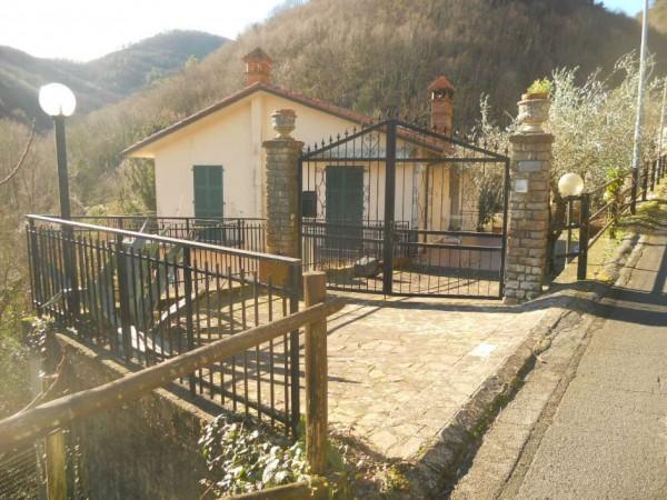 Villa in vendita a Riccò del Golfo di Spezia, San Benedetto, Con giardino, 240 mq