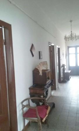 Appartamento in vendita a Camogli, Con giardino, 100 mq - Foto 15