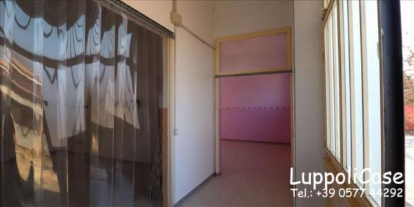 Locale Commerciale  in affitto a Monteriggioni, 150 mq - Foto 4
