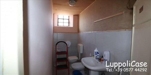 Locale Commerciale  in affitto a Monteriggioni, 150 mq - Foto 3