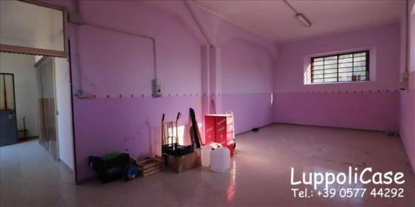 Locale Commerciale  in affitto a Monteriggioni, 150 mq - Foto 7