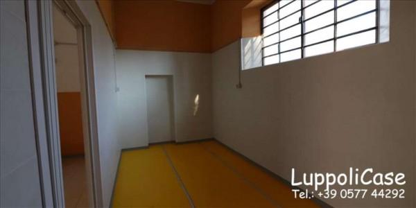 Locale Commerciale  in affitto a Monteriggioni, 150 mq - Foto 5