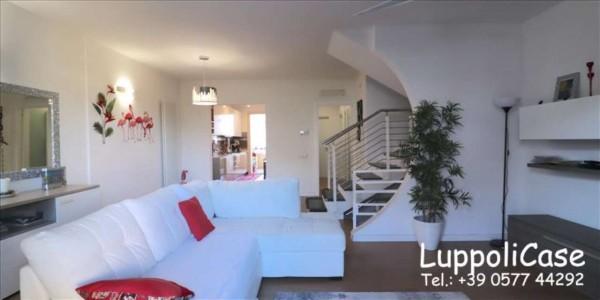 Appartamento in vendita a Follonica, Con giardino, 250 mq - Foto 13