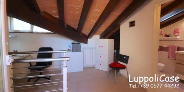 Appartamento in vendita a Follonica, Con giardino, 250 mq - Foto 16