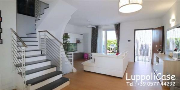 Appartamento in vendita a Follonica, Con giardino, 250 mq - Foto 14