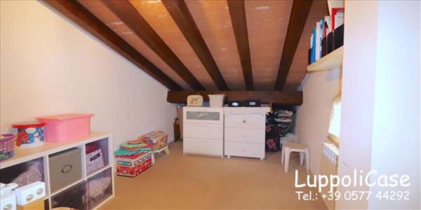 Appartamento in vendita a Follonica, Con giardino, 250 mq - Foto 19