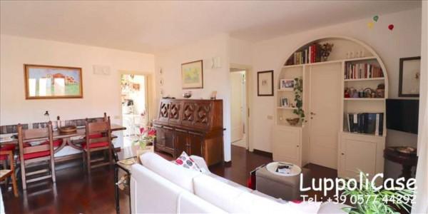 Appartamento in vendita a Castelnuovo Berardenga, 80 mq - Foto 17