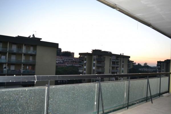 Appartamento in affitto a Roma, Torrino, Con giardino, 65 mq