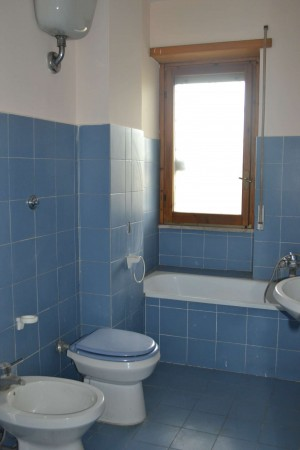 Appartamento in affitto a Roma, Torrino, Con giardino, 45 mq - Foto 11