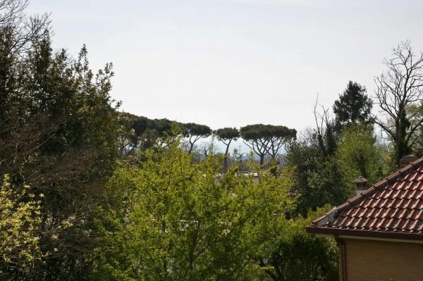 Villa in vendita a Rocca di Papa, Con giardino, 305 mq - Foto 35