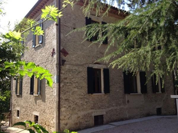 Locale Commerciale  in vendita a Todi, Todi, Con giardino, 500 mq - Foto 13