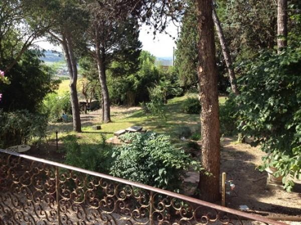 Locale Commerciale  in vendita a Todi, Todi, Con giardino, 500 mq - Foto 14