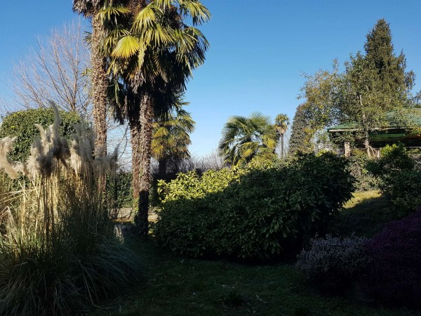 Villa in vendita a Brebbia, Con giardino, 316 mq - Foto 8