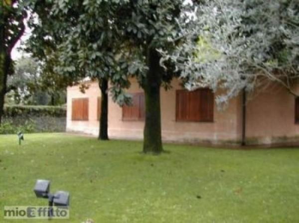 Villa in affitto a Roma, Appia Antica, Con giardino, 240 mq - Foto 7