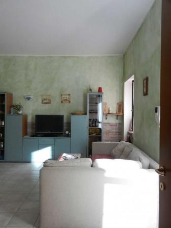 Appartamento in affitto a Venaria Reale, Centro Storico, Arredato, con giardino, 50 mq - Foto 8