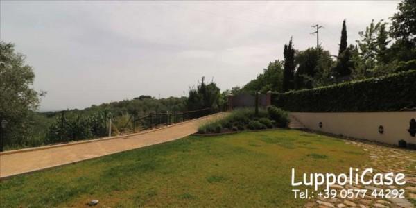 Villa in vendita a Siena, Con giardino, 250 mq - Foto 9