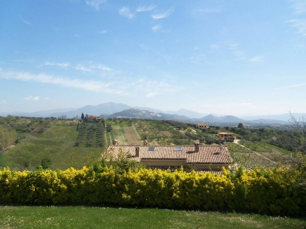 Villa in vendita a Mentana, Mezzaluna, Con giardino, 290 mq - Foto 4