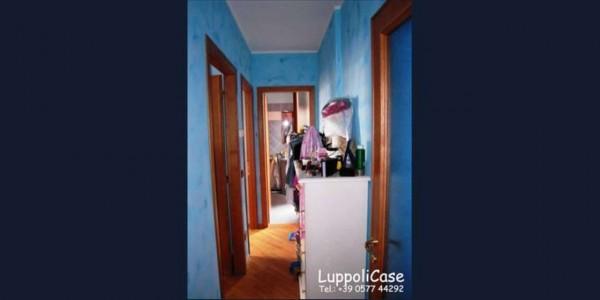 Appartamento in vendita a Sovicille, Con giardino, 63 mq - Foto 9