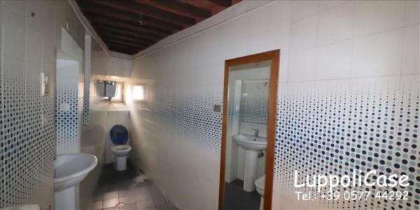 Appartamento in affitto a Siena, 100 mq - Foto 8