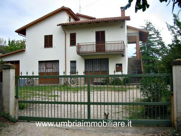 Villa in vendita a Todi, Con giardino, 350 mq