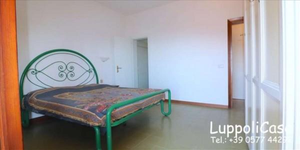 Appartamento in vendita a Castiglione della Pescaia, Arredato, con giardino, 80 mq - Foto 5