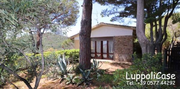 Appartamento in vendita a Castiglione della Pescaia, Arredato, con giardino, 80 mq - Foto 2