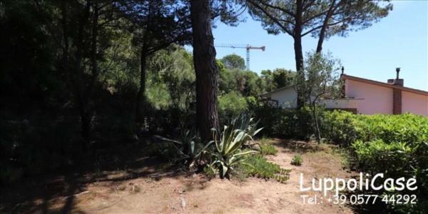 Appartamento in vendita a Castiglione della Pescaia, Arredato, con giardino, 80 mq - Foto 14