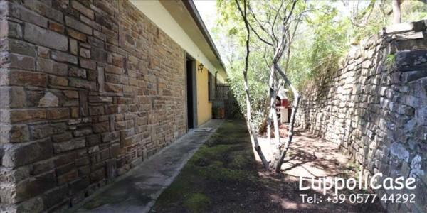 Appartamento in vendita a Castiglione della Pescaia, Arredato, con giardino, 80 mq - Foto 3