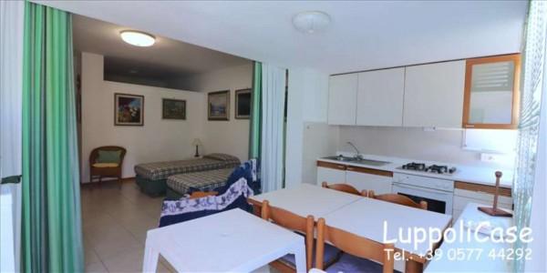 Appartamento in vendita a Castiglione della Pescaia, Arredato, 45 mq - Foto 7