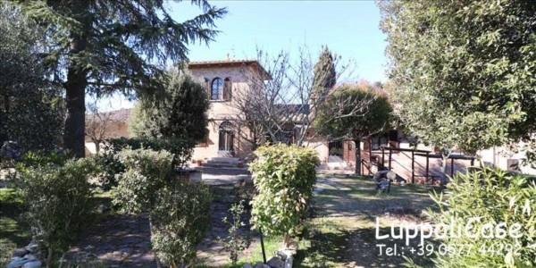 Villa in vendita a Castelnuovo Berardenga, Arredato, con giardino, 312 mq