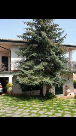 Villa in vendita a Trecastagni, Trecastagni, Con giardino, 220 mq - Foto 13