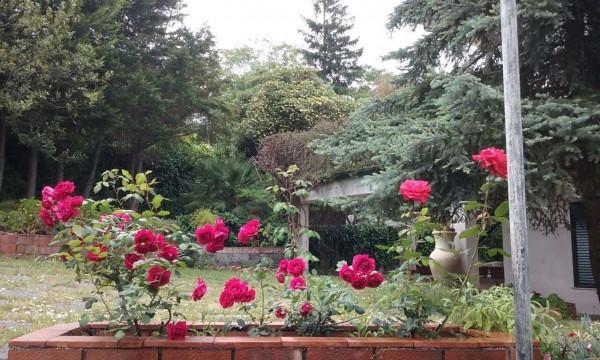 Villa in vendita a Trecastagni, Trecastagni, Con giardino, 220 mq - Foto 11