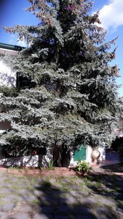 Villa in vendita a Trecastagni, Trecastagni, Con giardino, 220 mq - Foto 7