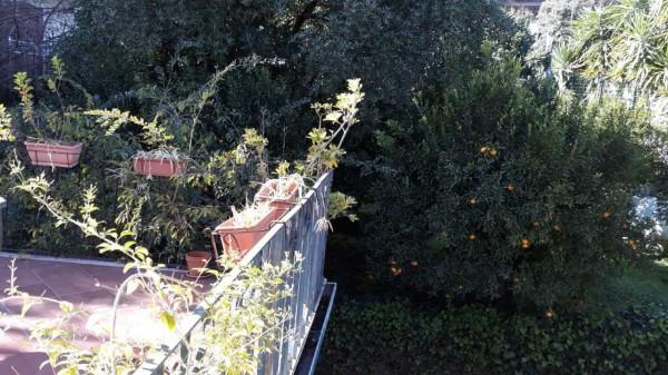 Villa in vendita a Trecastagni, Trecastagni, Con giardino, 220 mq - Foto 9