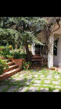 Villa in vendita a Trecastagni, Trecastagni, Con giardino, 220 mq - Foto 2