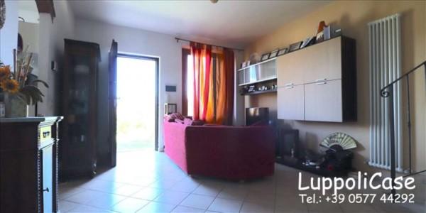 Appartamento in vendita a Murlo, Con giardino, 87 mq - Foto 9