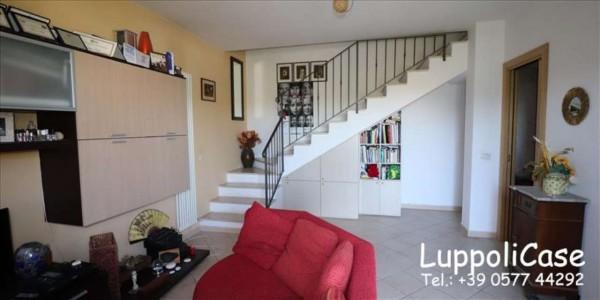 Appartamento in vendita a Murlo, Con giardino, 87 mq - Foto 11