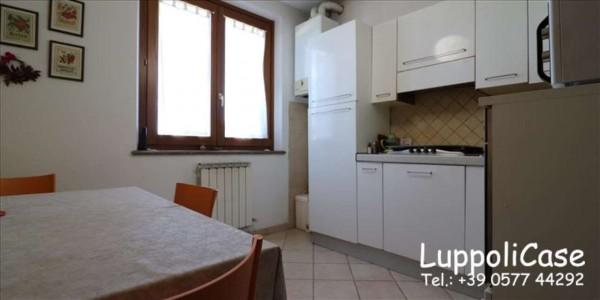 Appartamento in vendita a Murlo, Con giardino, 87 mq - Foto 15