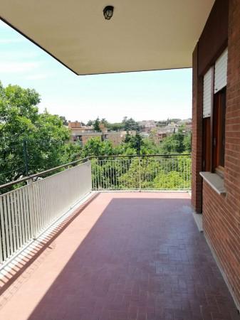 Appartamento in affitto a Roma, Cassia, San Godenzo, Grottarossa, Con giardino, 110 mq - Foto 15