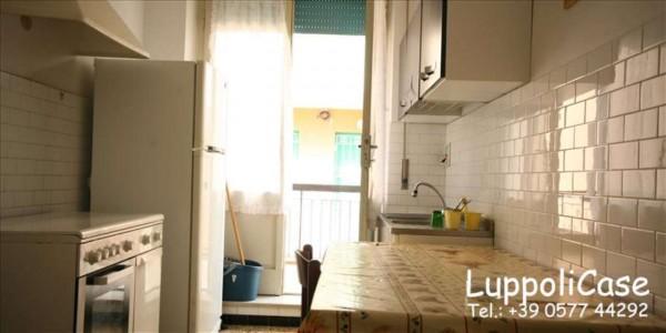 Appartamento in vendita a Follonica, 65 mq - Foto 5