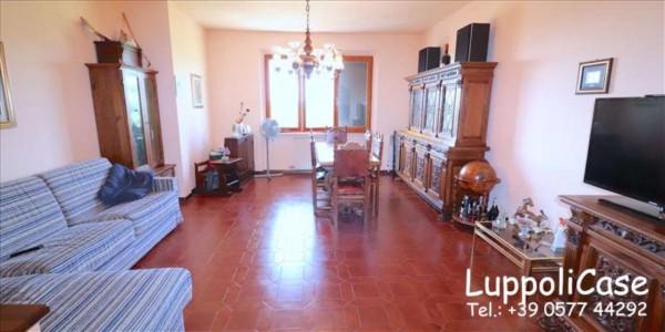 Appartamento in vendita a Castelnuovo Berardenga, 111 mq - Foto 9